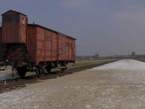 Birkenau Train and Railway
