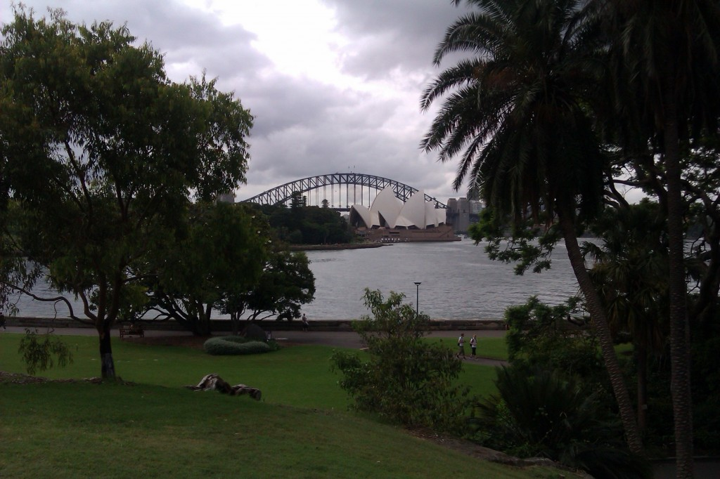 A view from the Botanical Gardens